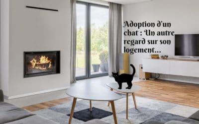 Adoption d'un chat : Un autre regard sur son logement…