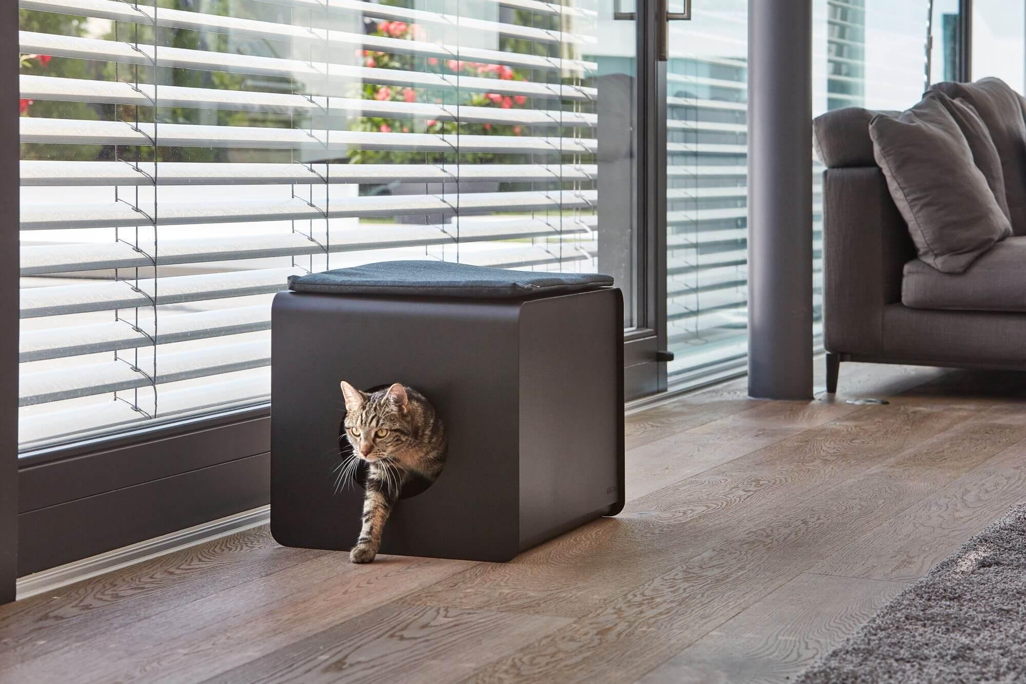 bac à litière idéal chat sito de miacara