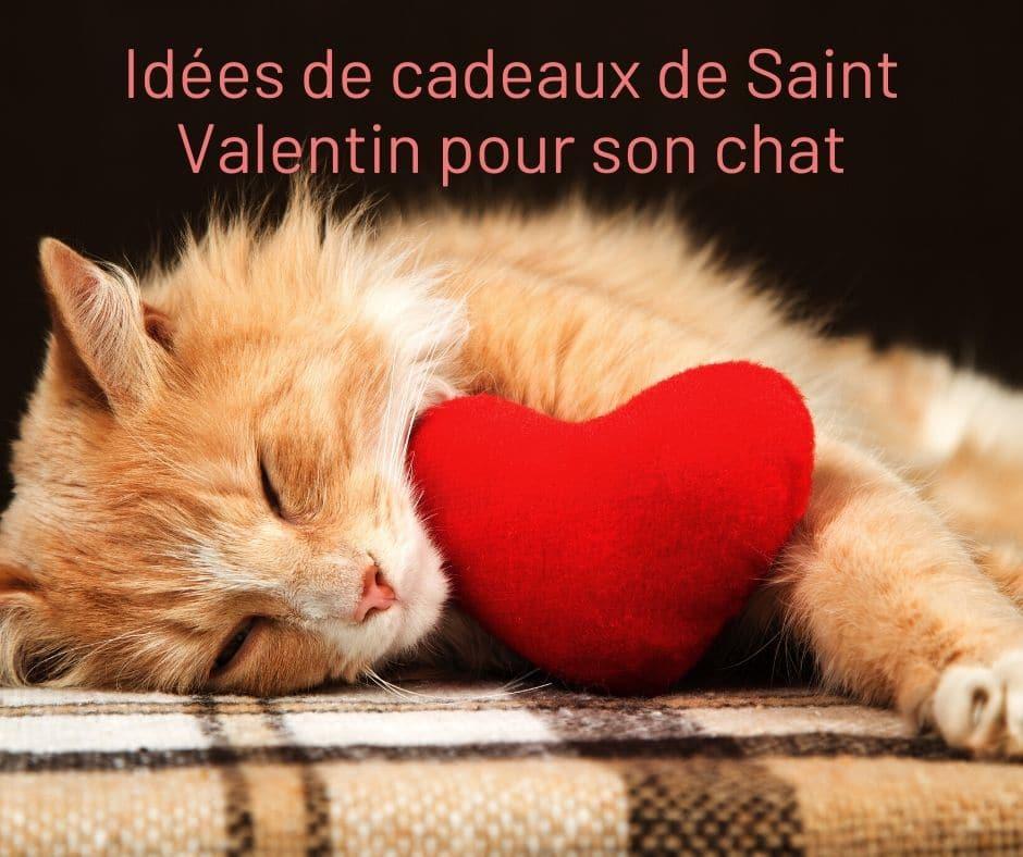 cadeaux de Saint Valentin pour son chat