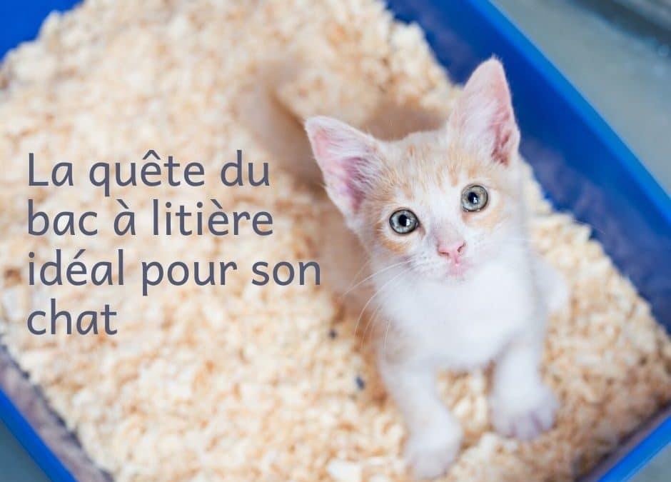 La quête du bac à litière idéal pour son chat