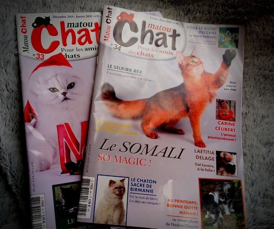 Interview de Brigitte Bulard Cordeau - magazine matou chat