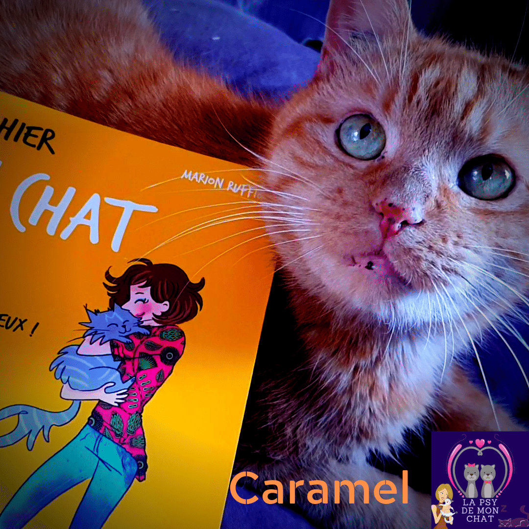 Mon cahier Mon chat & moi Marion Ruffié présenté par Caramel sur Instagram