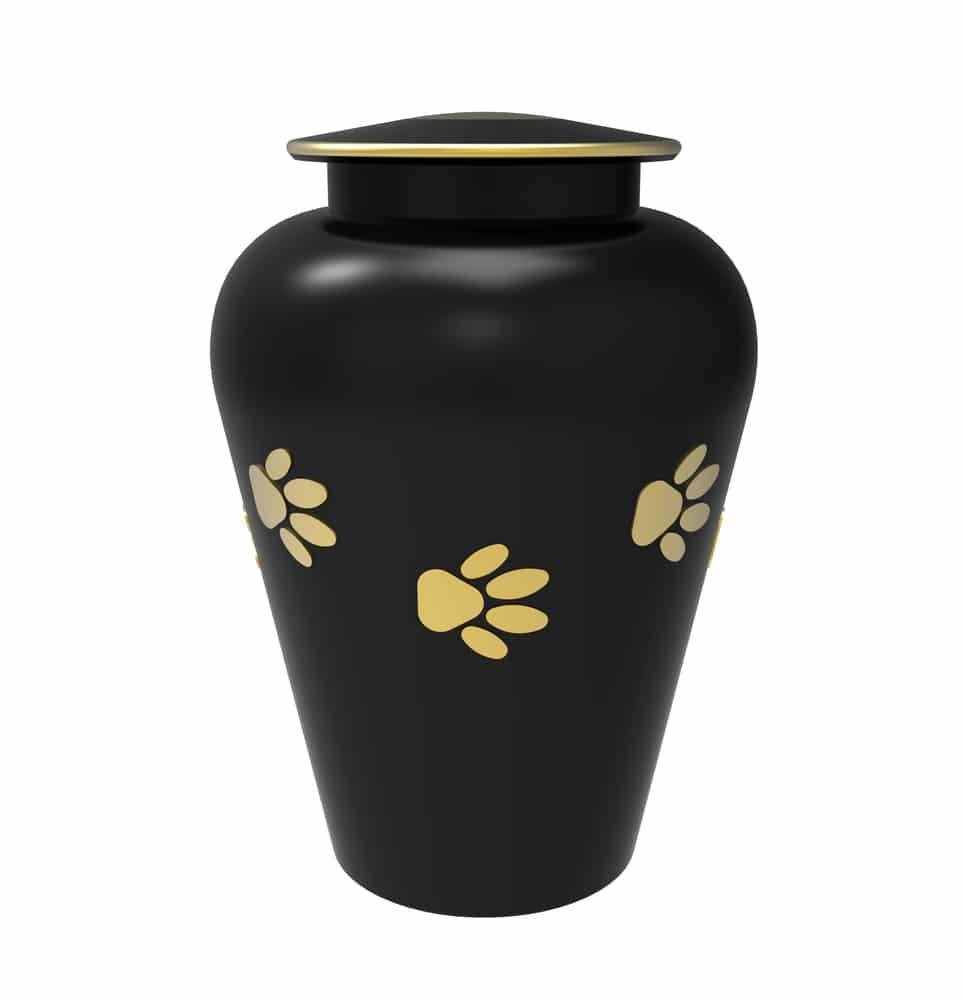 urne funéraire animal