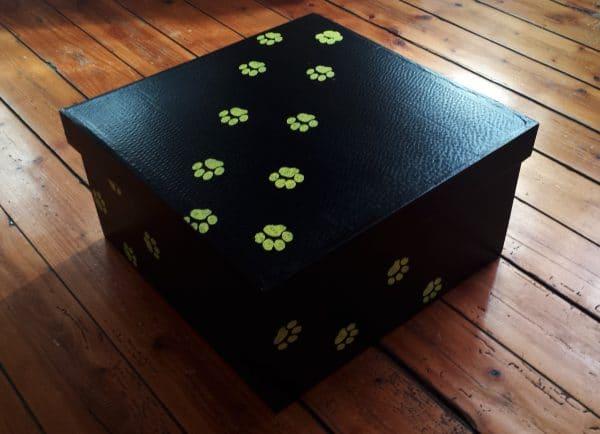 Cercueils chat en carton recyclé