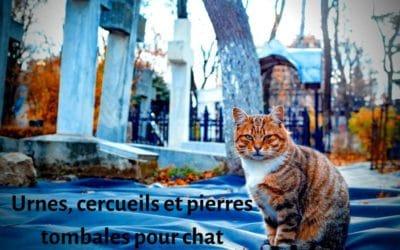 Urnes, cercueils et pierres tombales pour chat