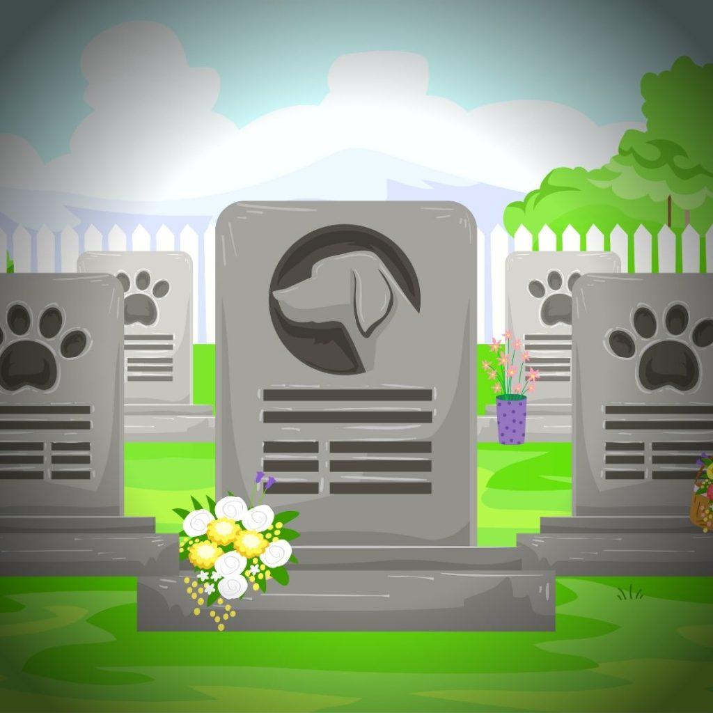 cercueils - cimetière pour chat