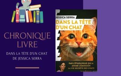 Dans la tête d'un chat de Jessica Serra