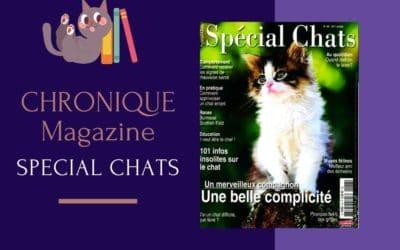 Le Magazine : Spécial Chats