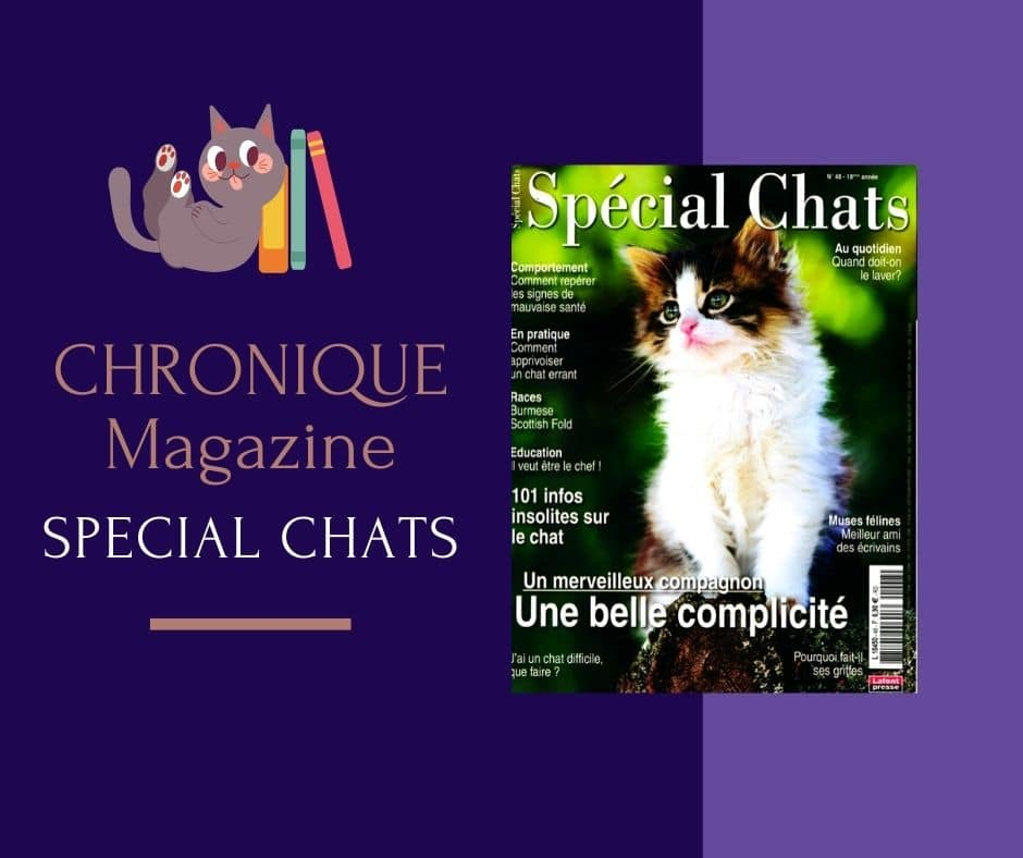 Le magazine Spécial chats