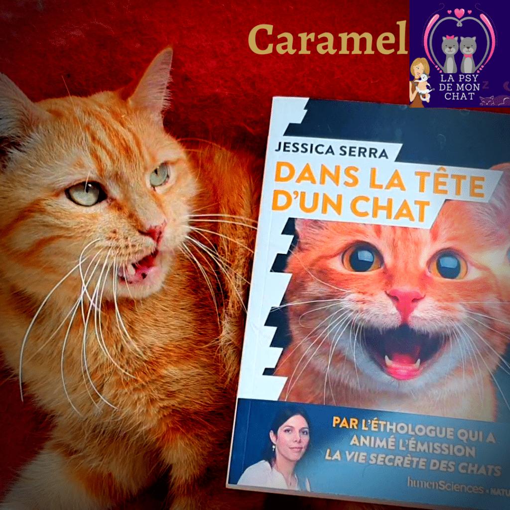 livre dans la tete d'un chat et caramel