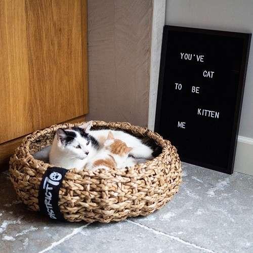 panier naturel chat