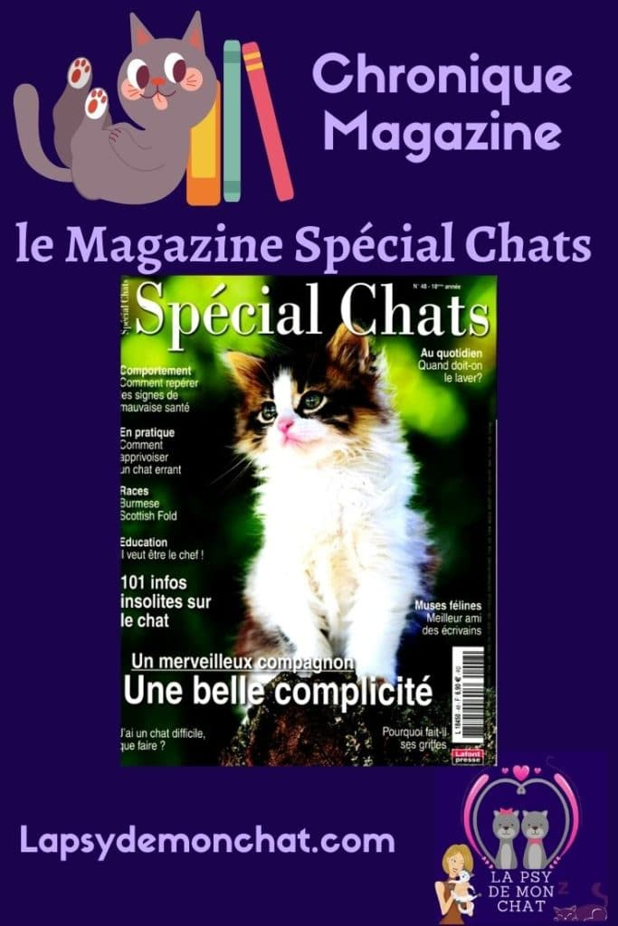 pinterest - magazine spécial chats