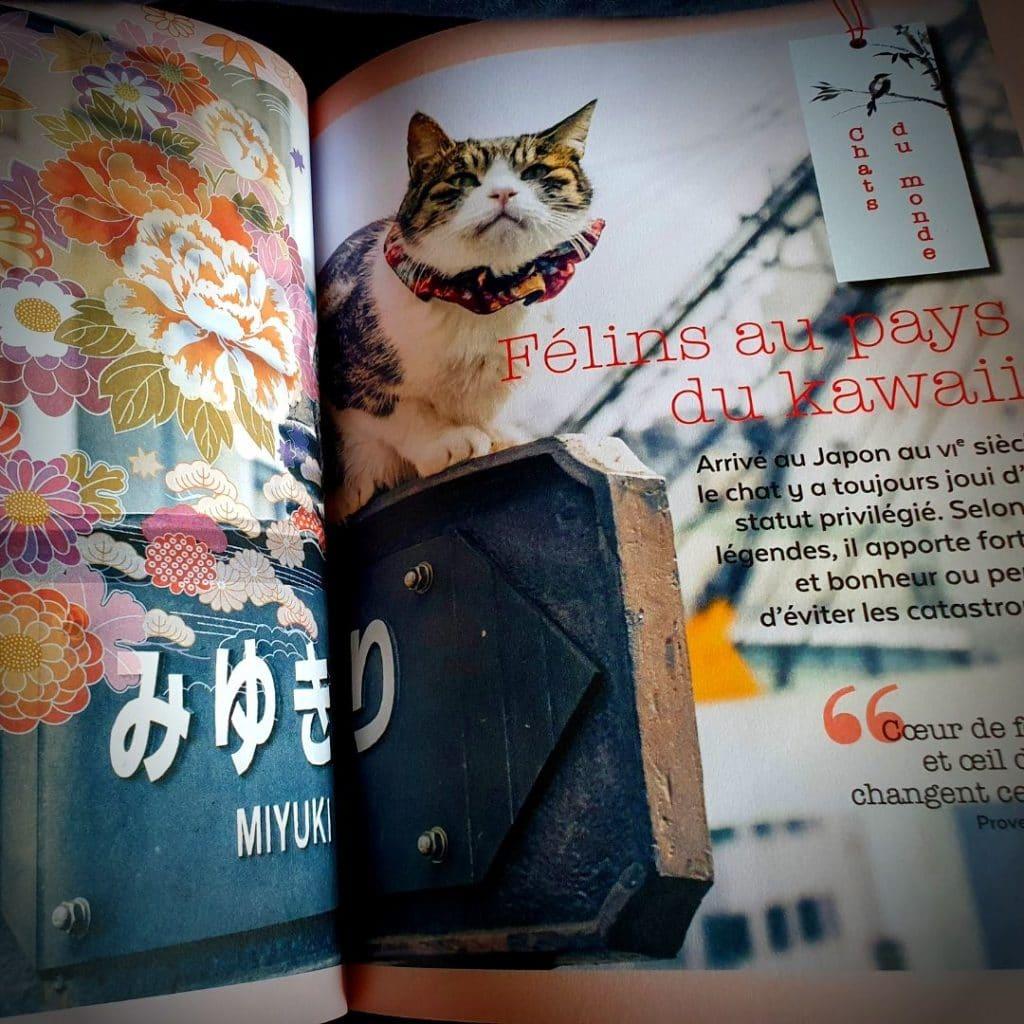revue miaou numero 10