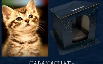 CABANACHAT : Maisons en Carton pour chat