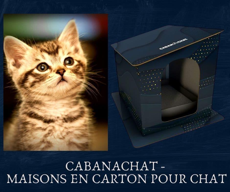 CABANACHAT - Maisons en Carton pour chat -