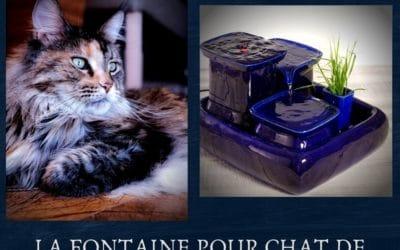 La Fontaine pour chat de Miaustore
