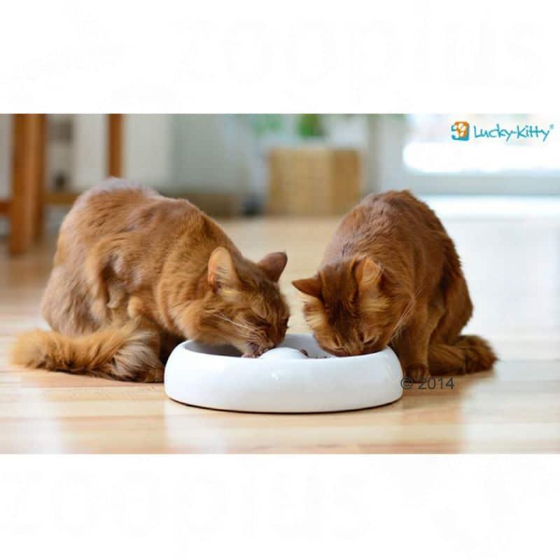 Gamelle Lucky-Kitty en céramique pour chat