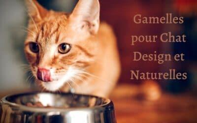 Gamelles pour chat design et naturelles