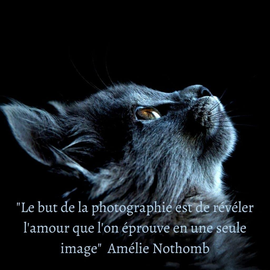 Le but de la photographie est de révéler l'amour que l'on éprouve en une seule image_ - Amélie Nothomb (1)