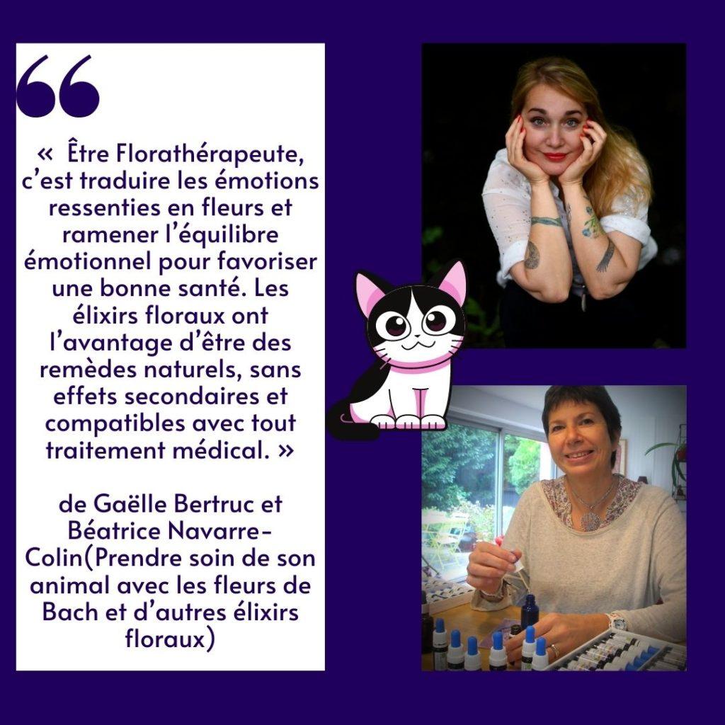 citation de Gaëlle Bertruc et Béatrice Navarre-Colin