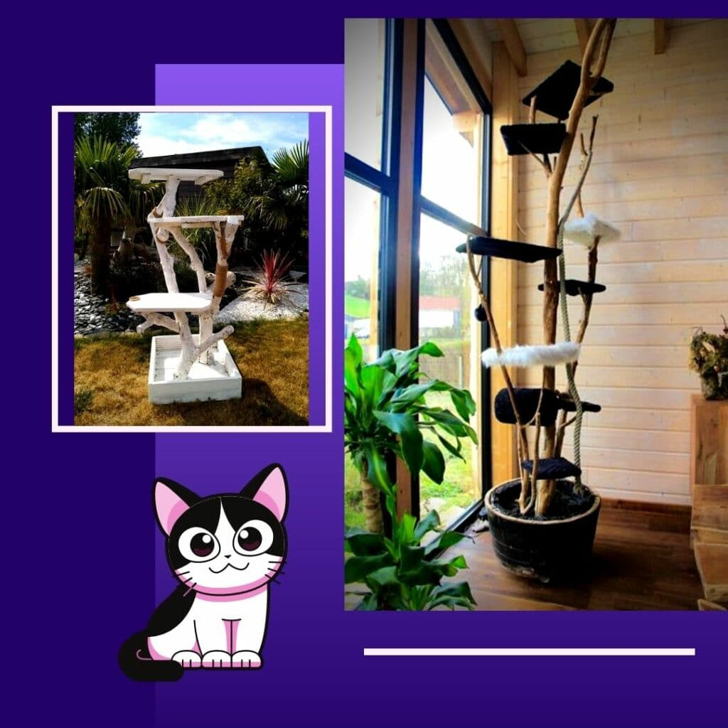 A chat qu'un son arbre  Arbres à chat en Bois massif