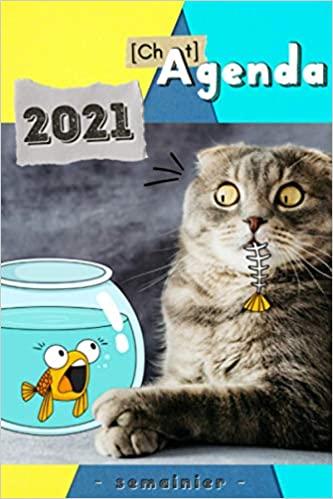 Agenda Chat 2021 Chat Doodle Humoristique