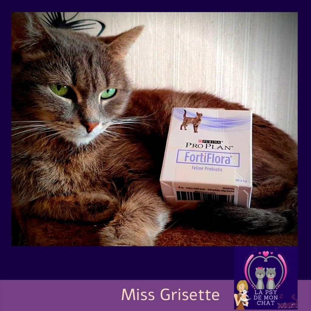 Fortiflora et Miss Grisette -