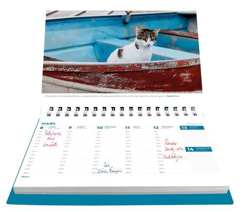 L'Agenda-calendrier Chats et chatons 2021