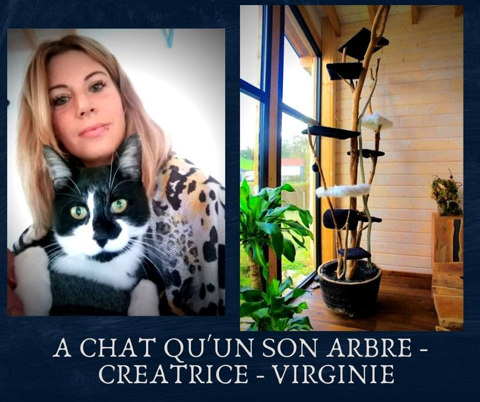 a chat qu'un son arbre