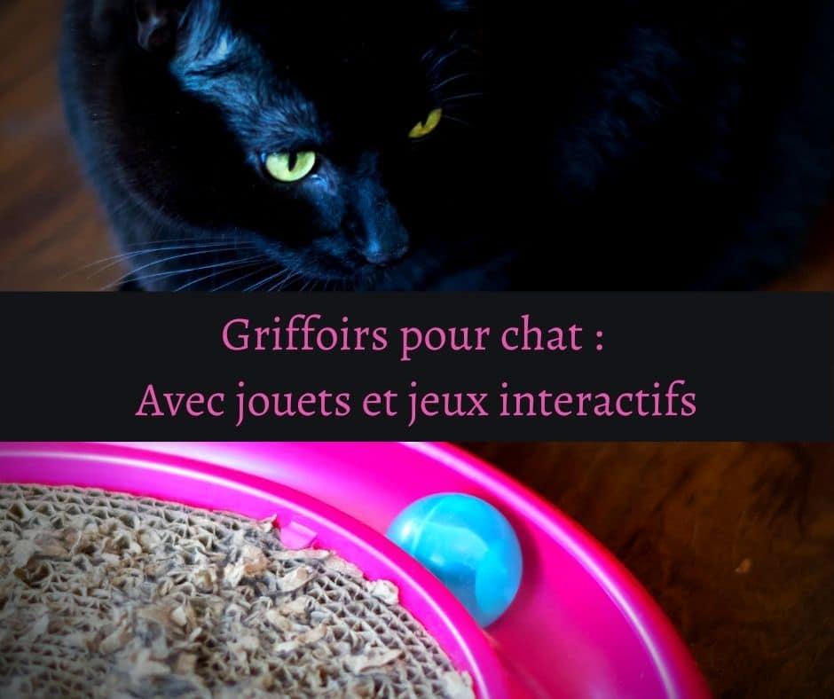 Griffoirs pour chat _ Avec jouets et jeux interactifs