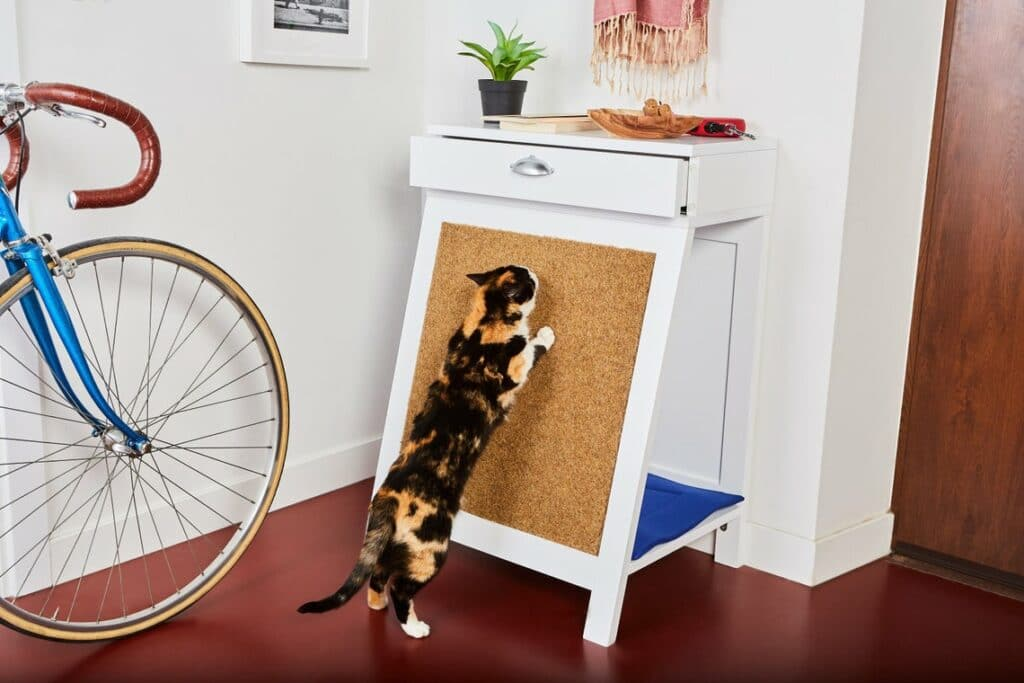 Hall Meubles chat griffoir