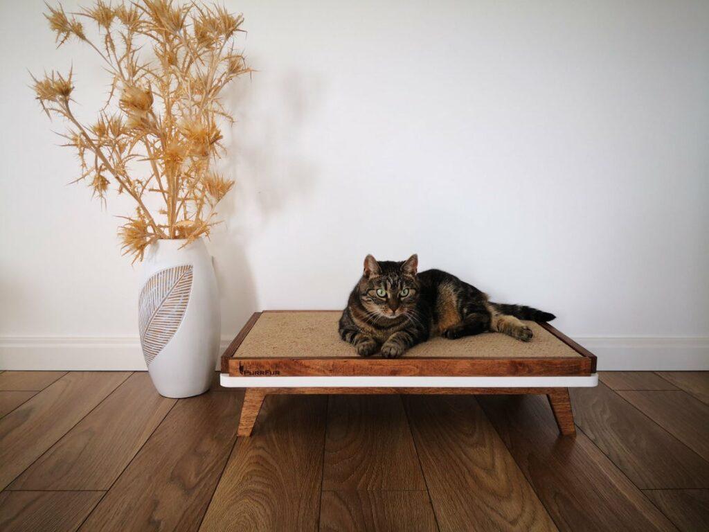 Magnifique griffoir en carton pour les grands chats
