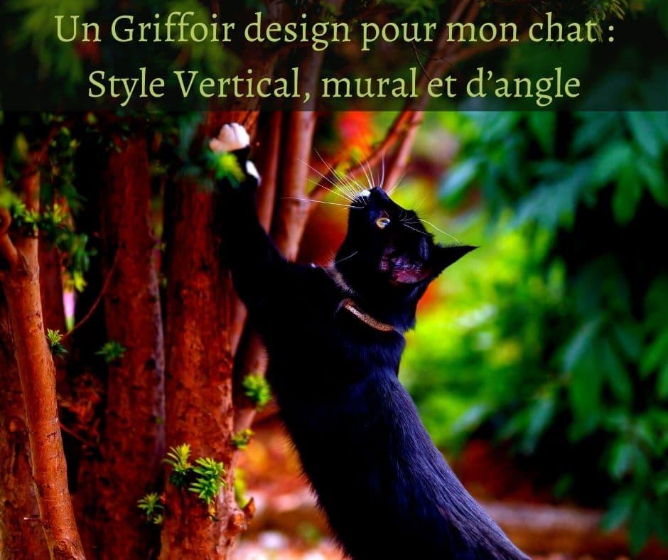 Un Griffoir design pour mon chat - Style Vertical, mural et d'angle