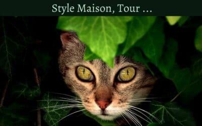Un griffoir design pour mon chat : Style Maison, Tour …