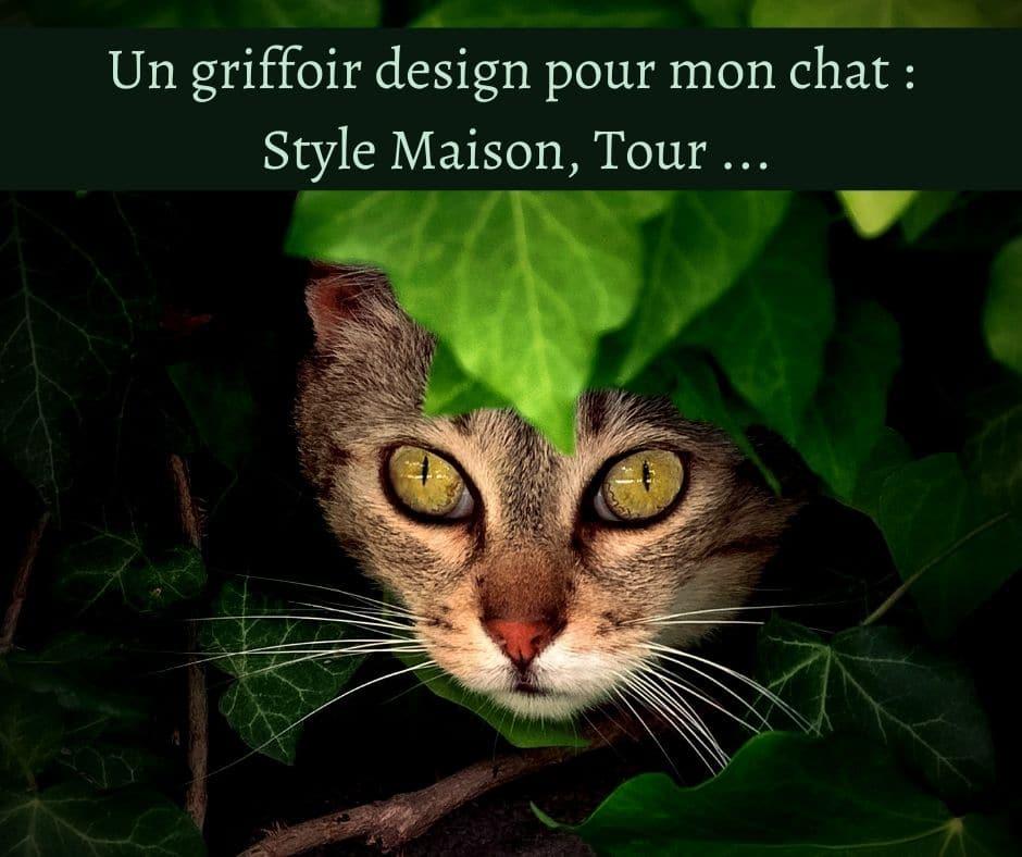 Un griffoir design pour mon chat - Style Maison, Tour ...