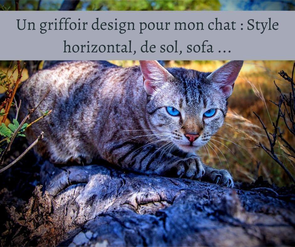 Un griffoir design pour mon chat _ Style horizontal, de sol, sofa ...