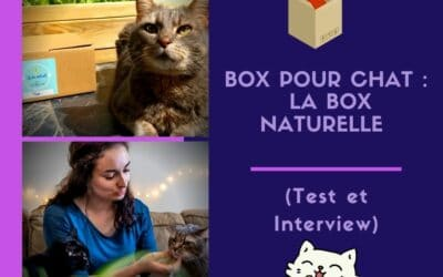 Box pour chat : la Box naturelle (Test et Interview)