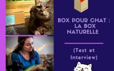 Box pour chat : la Box naturelle (Test et Interview)