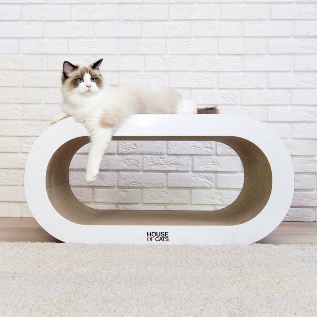 Énorme arbre à gratter en carton Cat de House of Cats