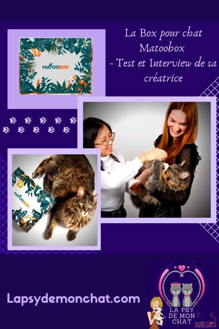 Box pour chat Matoobox ( Test et Interview ) - pinterest