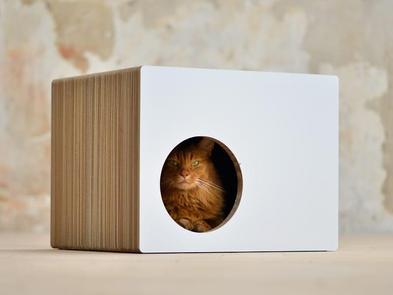 Phredia Eckhaus griffoir design de chez Cat-On