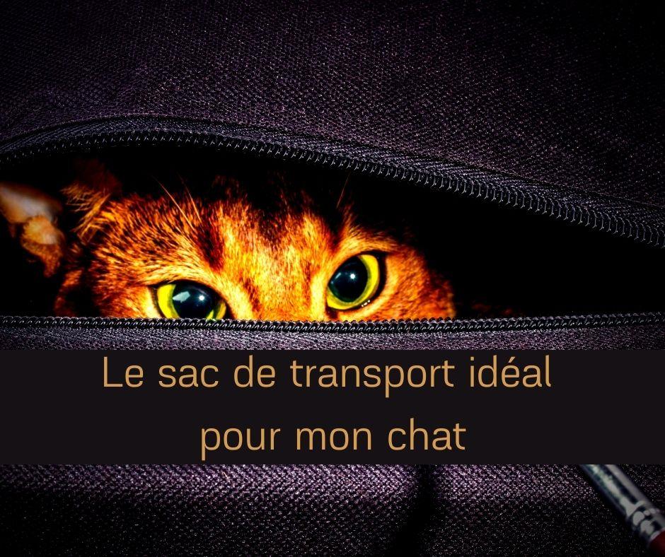 Le sac de transport idéal pour mon chat