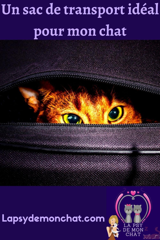 Un sac de transport idéal pour mon chat - pinterest