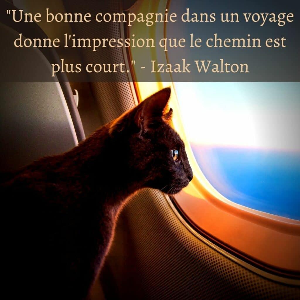 """""""Une bonne compagnie dans un voyage donne l'impression que le chemin est plus court."""" - Izaak Walton"""