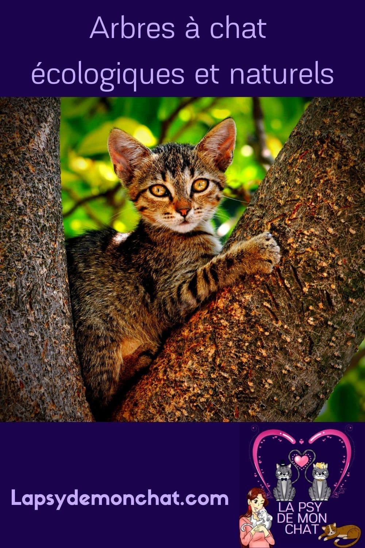 Arbres à chat écologiques et naturels - pinterest