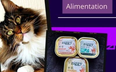 La marque Ziggy : pâtée pour chats