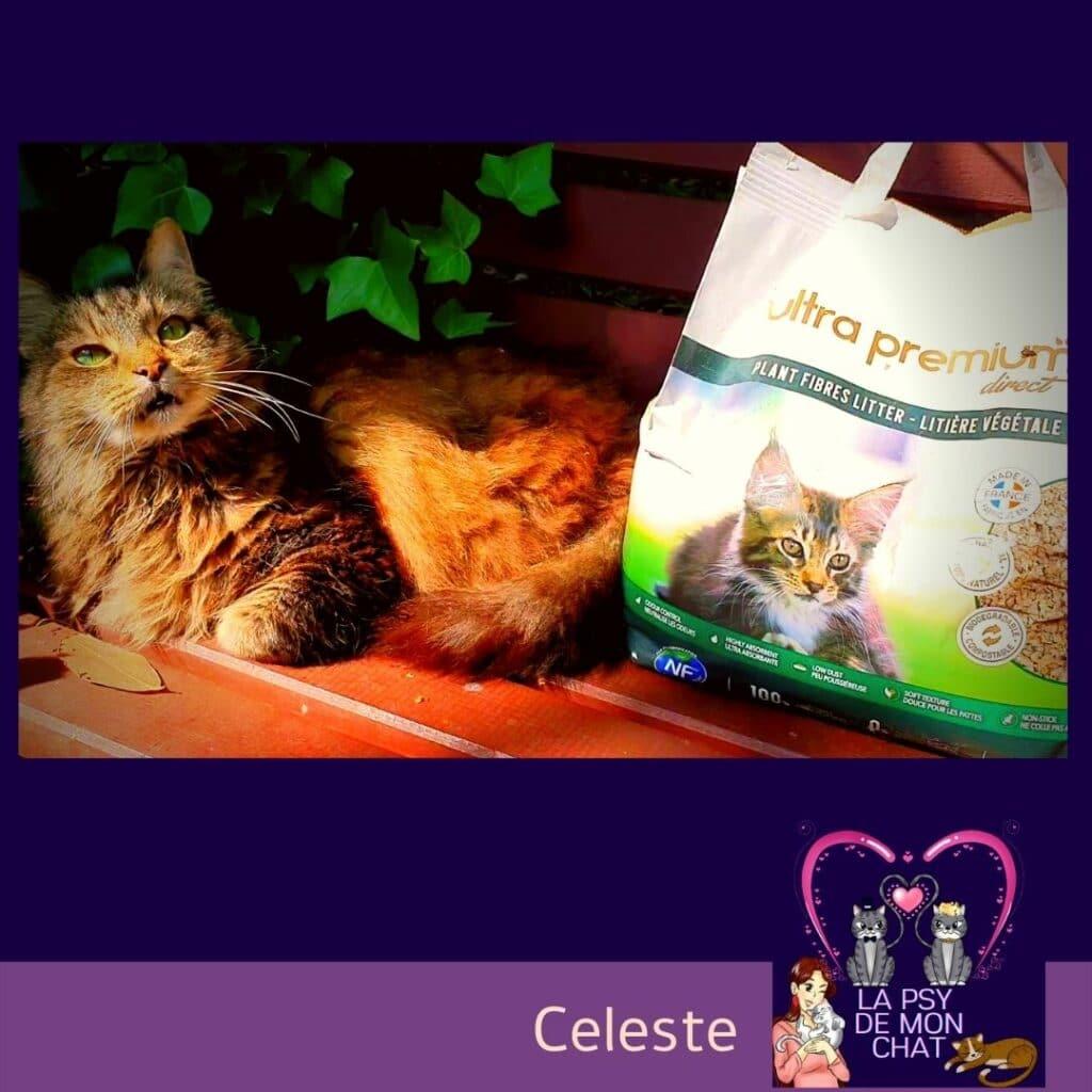 Ultra premium direct – La litière végétale pour chat 100% naturelle -