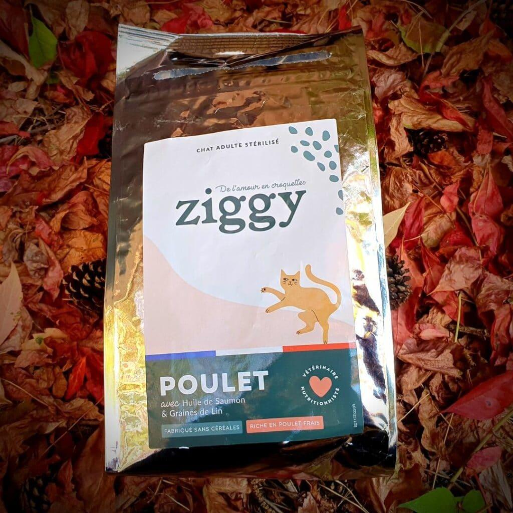 Croquettes Ziggy
