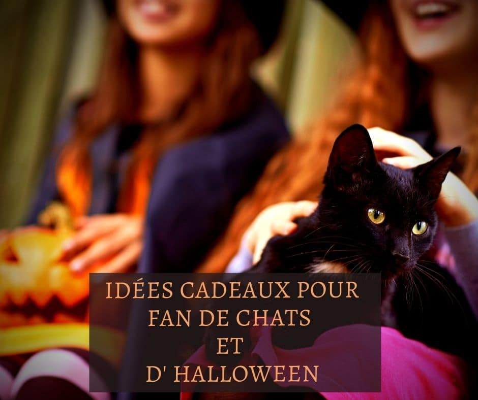 Idées cadeaux pour fan de chats et d' Halloween