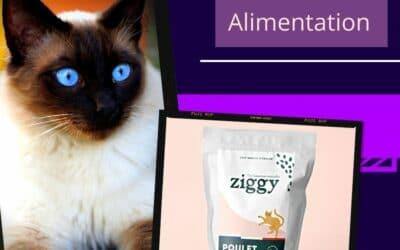 La marque Ziggy : les croquettes pour chat